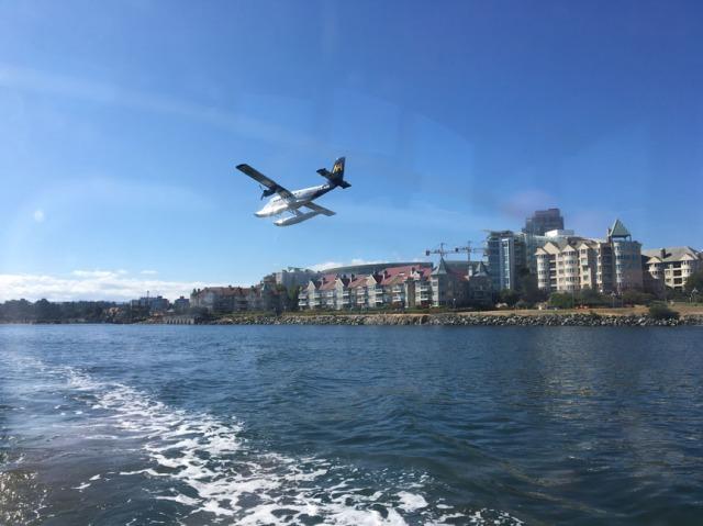•e-IMG_2253-plane landing