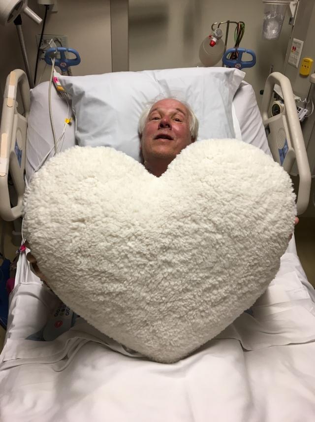 rds heart pillow