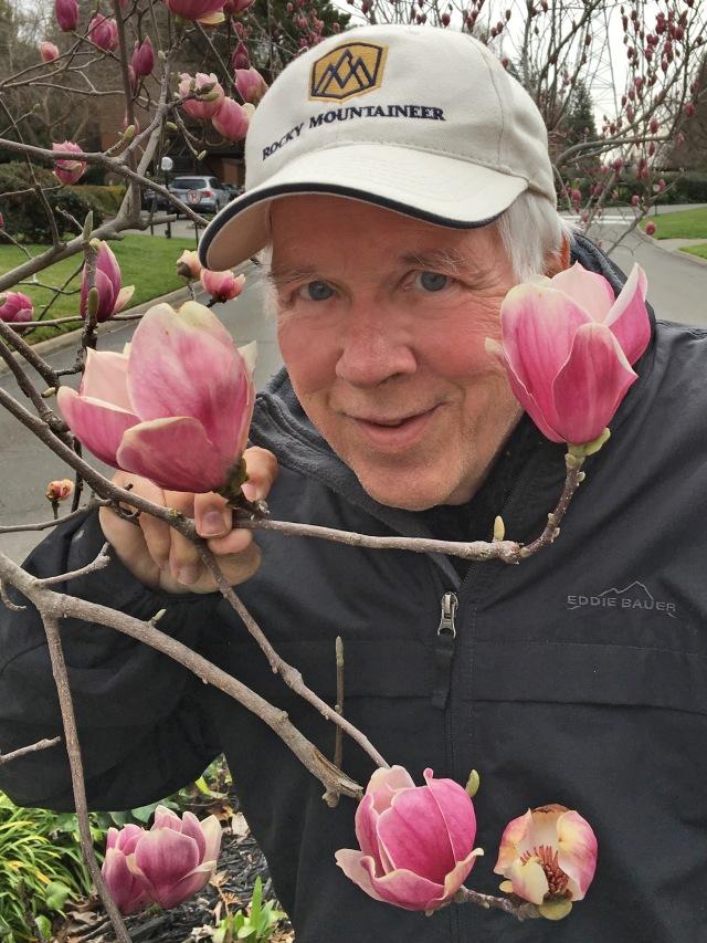 J6527 rds tulip tree blossomsCR