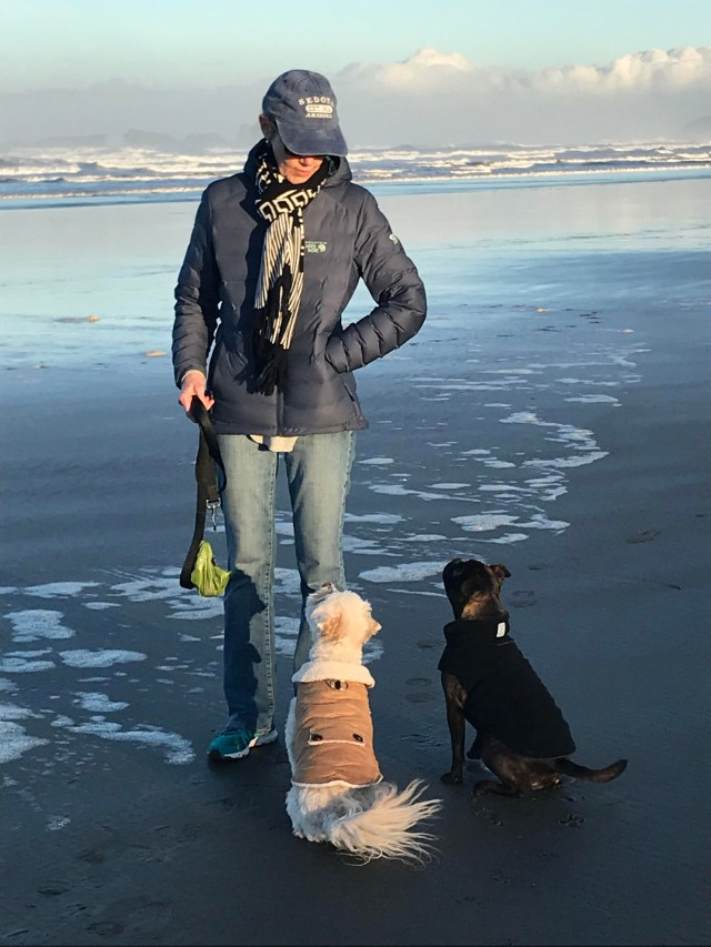 e-Marie dogs beach